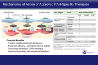 Advanced Topics in PAH Part I<br />Research Updates and the Evolution of Care in PAH